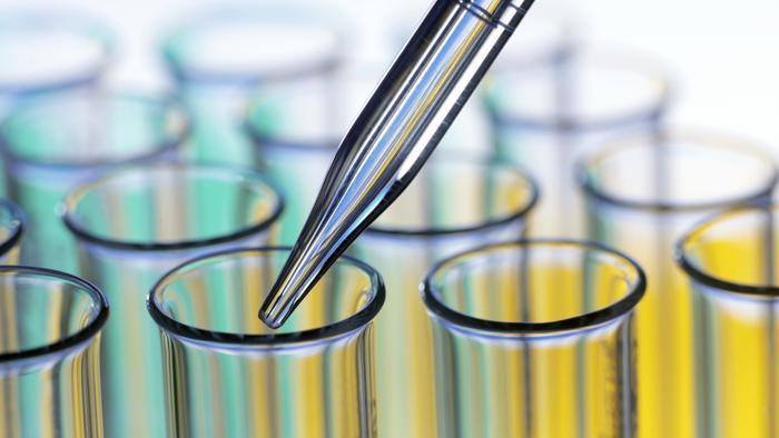 metodi alternativi sperimentazione animale